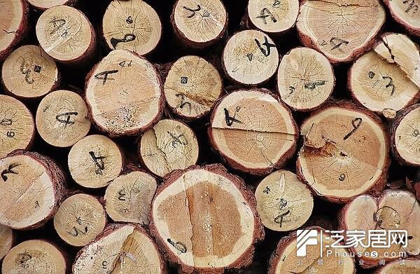 你知道木材上横切面符号代表什么吗? 标注在木材上的英文、数字或号,其实,这些英文、数字或号等都是进口木材上的标识,它在木材砍伐、进口和物流运输中发挥着重要作用。而且,了解木材上的那些标识,有时还有助于我们对该木材的识别。据说,有些经验丰富的木材商一看木材上的标识就知道是什么木材,甚至知道该木材出自什么地方或哪个公司。