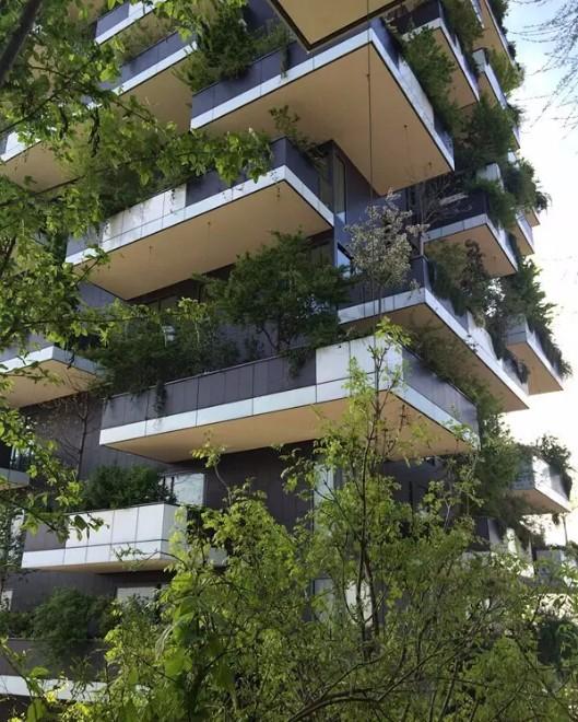"""森林""""的设计师,该建筑目前已获得多个国际高层建筑大奖,包括德国"""