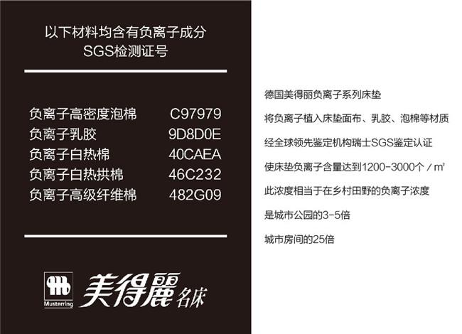 负离子SGS认证jpg.jpg